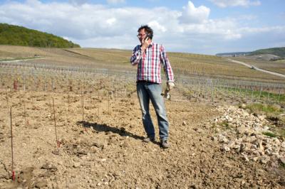 Jean-Philippe Diot in den neuen Chardonnay-Rebbergen