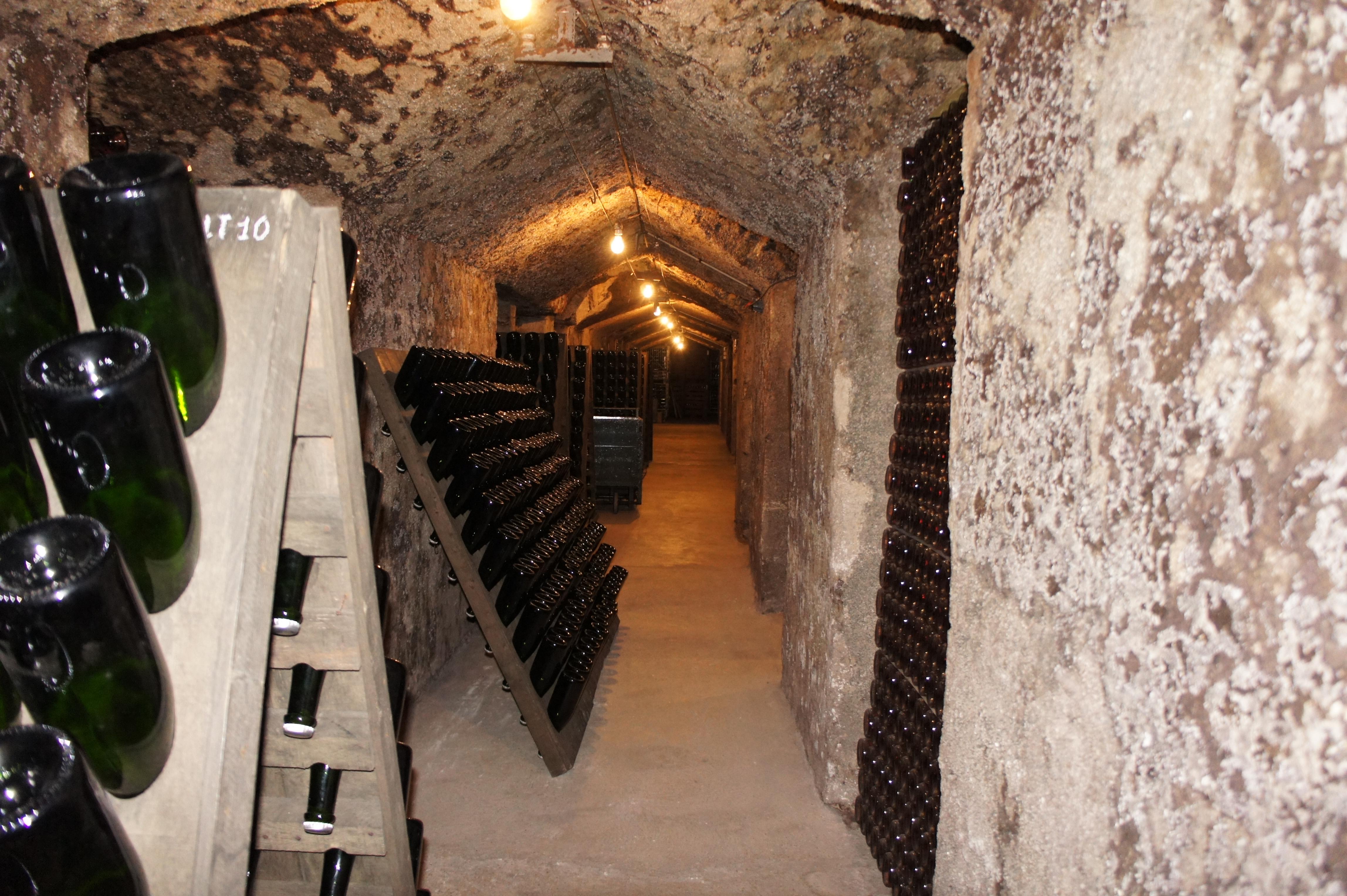 Der selbstgebaute Keller mit Rüttelpulten