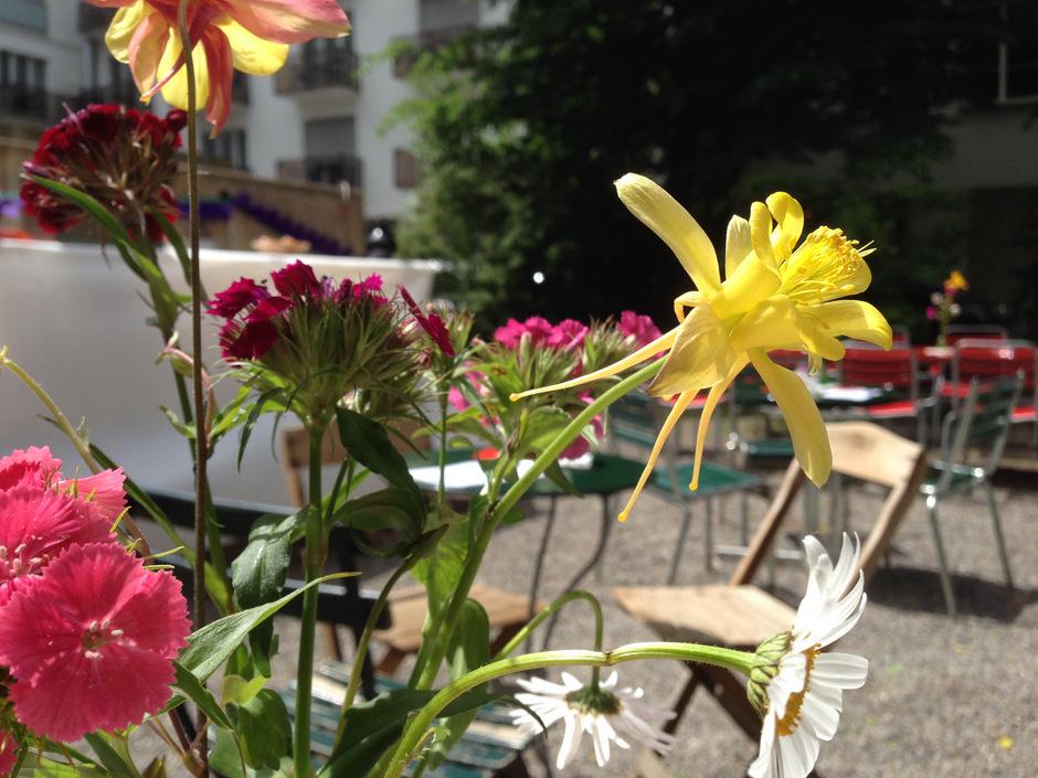 Kreislauf 4 + 5 Blumen